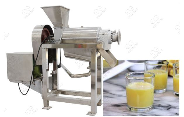 ginger juice processing machine