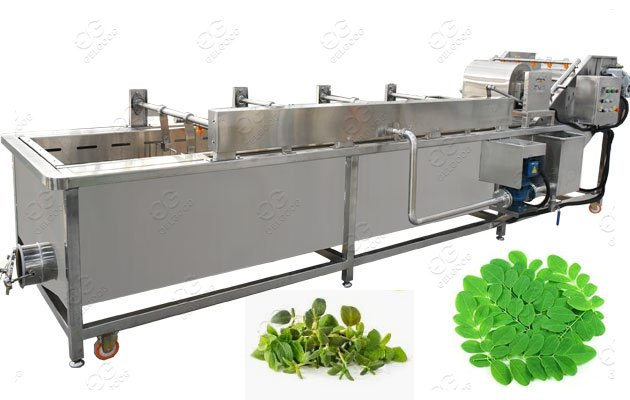 moringa leave cleaning machine