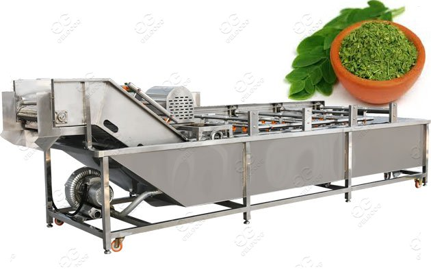 moringa leaf processing machine