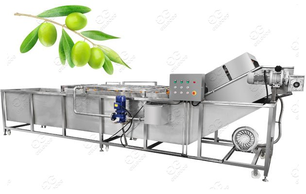 Olive Fruit Washing Machine