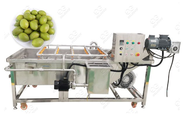 olive cleaning machine manufacturer