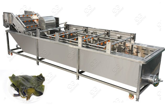 Stainless Steel Seaweed Washing Machine Sea Kelp Cleaning Machine