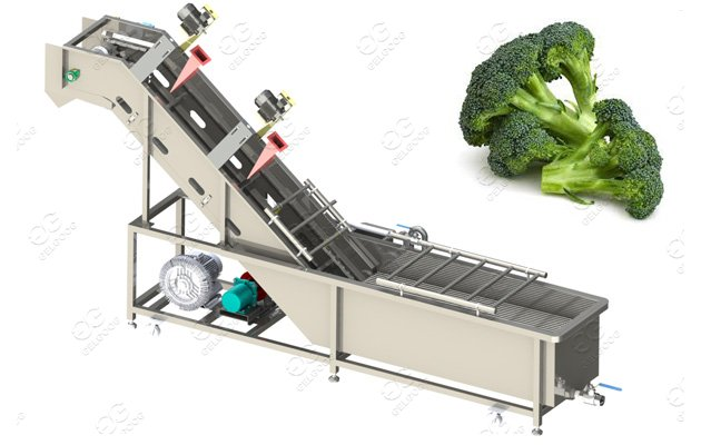 Broccoli Florets blanching machine