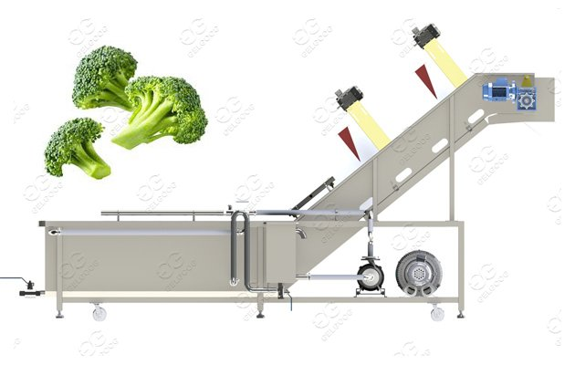 vegetable washing machine for sale