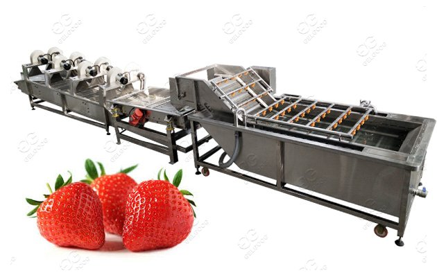 Strawberry Washing Machine Fruit Vegetable Washing Line
