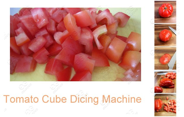 industrial tomato dicer