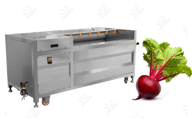 Beet Root Washing Machine Turni