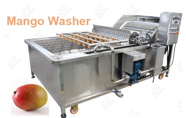 Bubble Type Mango Washing Machine Factory Price