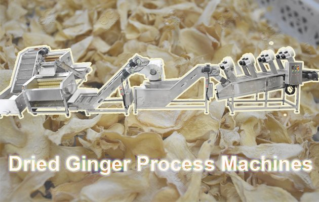 continuous ginger powder production line