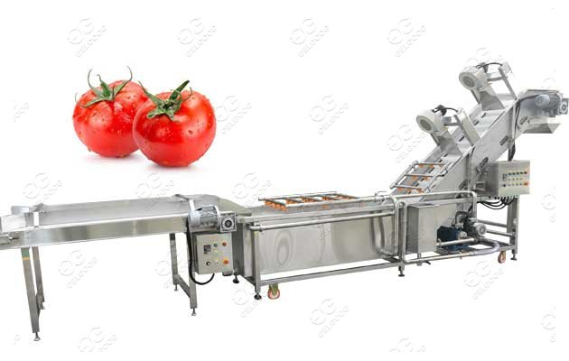 Customized Tomato Washer Machin